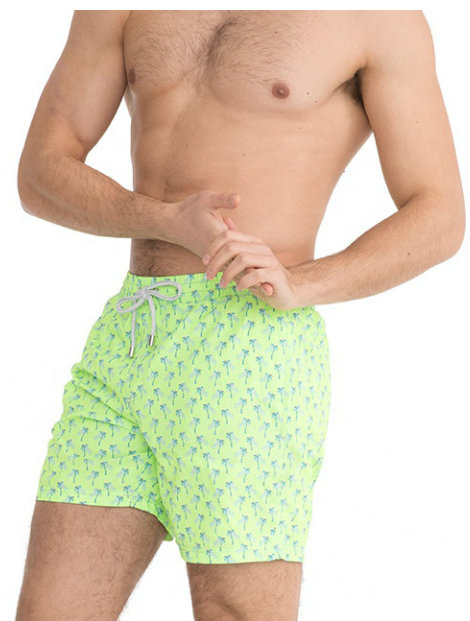Wholesale Soothing Green Beach Men's Shorts Manufacturer