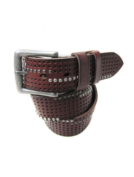 Wholesale Studded Brown Simple Belt Manufacturer